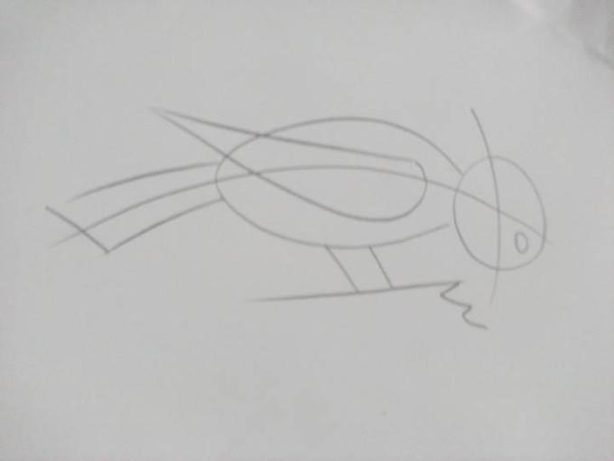 как рисовать дятла наброски