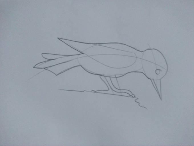 как рисовать дятла прорисовка
