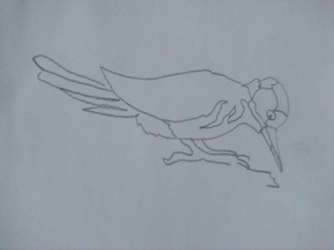 как рисовать дятла размечаем части